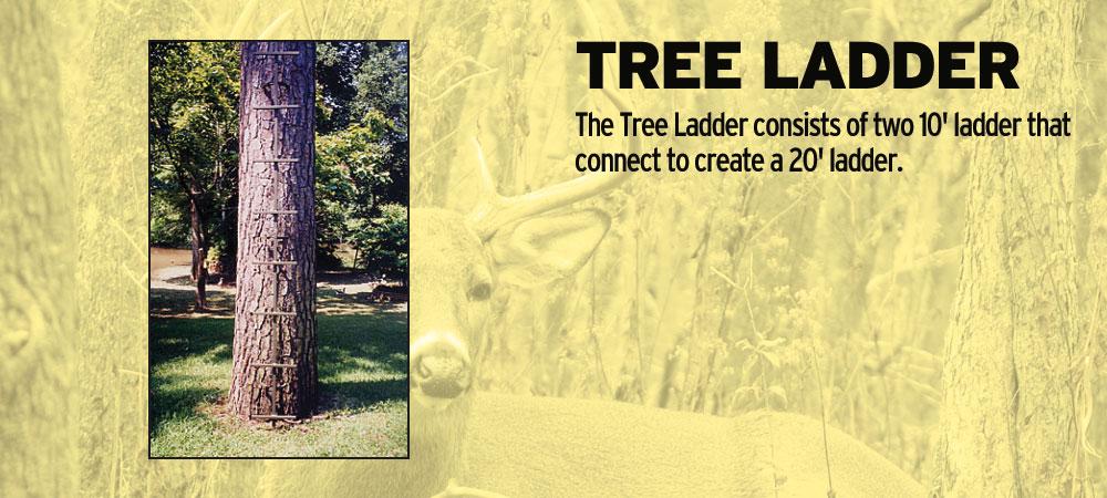 tree ladder   CB's Deer Stands Augusta GA and Aiken SC